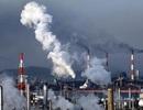 Ô nhiễm không khí dẫn đến nguy cơ tử vong sớm ở người cao tuổi