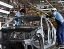 Thả nổi cho nhập khẩu ô tô: Câu chuyện buồn nhìn từ 18 tàu vỏ thép tiền tỷ nằm bờ