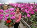 Một phụ nữ Trung Quốc lấy nhầm chậu lan hơn 68 tỷ đồng