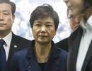Tổng thống Hàn Quốc bị phế truất thuê 14 luật sư bào chữa