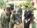 Bắt giữ 55 kg pháo nổ hình lựu đạn