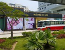 Cửa hàng chỉ bán cho khách Trung Quốc: Nhức nhối nhưng không dễ giải quyết?