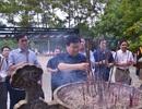 Phó Thủ tướng Trịnh Đình Dũng tri ân liệt sĩ tại Quảng Trị