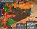 Chiến dịch Hama - Canh bạc cháy túi…