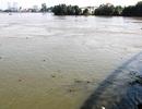 Bộ TN-MT trả lời thông tin nước sông Đồng Nai nhiễm dioxin