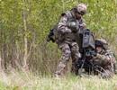 Pháp dính cáo buộc cấp vũ khí mạnh cho phiến quân Syria