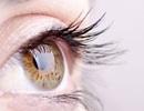 Kỹ thuật mới có thể phát hiện sớm bệnh về mắt ở con người