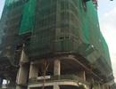 Tốc độ xây dựng vượt trội, Gelexia Reverside trở thành hàng hot trên thị trường