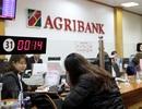 Agribank chuyển mình từ thành công tái cơ cấu