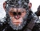 Đại chiến hành tinh khỉ được đánh giá cao