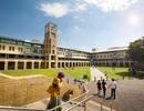 Hội thảo du học cùng trường  5* về cơ hội việc làm cho sinh viên- UNSW, Úc