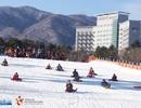 """Bật mí cách chơi để vui """"hết nấc"""" tại khu trượt tuyết Hàn Quốc"""