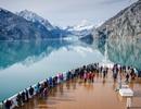 20 bức ảnh quyến rũ bạn đến Alaska