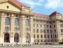 Lộ trình chinh phục bằng Bác sĩ tại châu Âu