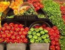 """Izzi Châu Á """"chiêu đãi"""" tiệc thực phẩm an toàn Green Fest"""
