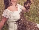 Điên rồ bà bầu chụp ảnh cùng 20.000 con ong