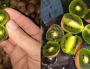 Nhìn đã chảy nước miếng, chị em tranh mua kiwi tí hon 1 triệu đồng/kg