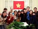 Nên học tại Việt Nam hay du học: Kỳ 2 - Chọn ngành đúng chưa đủ