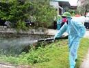 Hà Nam: Số ca mắc sốt xuất huyết tiếp tục tăng