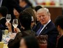 Lộ thực đơn quốc yến chiêu đãi Tổng thống Trump ở Trung Quốc