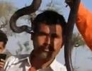 Du khách bị cắn chết khi chụp ảnh lưu niệm với rắn hổ mang