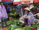 Nghệ An: Mưa lũ kéo dài, giá rau xanh tăng phi mã