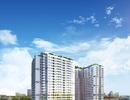 Khai trương tầng điển hình và tri ân khách hàng Dự án Rivera Park Hà Nội