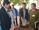 Hà Nội: Niêm phong 200 lít rượu nếp của một nhà hàng