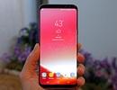 Samsung tung bản cập nhật tối ưu màu sắc trên Galaxy S8