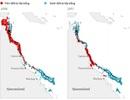 Không còn hy vọng phục hồi lại rạn san hô lớn nhất thế giới