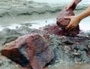 Mỏ sắt Thạch Khê: Nếu chưa làm, không nên làm...