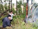 Cháy lớn thiêu rụi hơn 1 hecta rừng keo