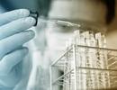 Quy trình mới thúc đẩy phát triển các thuốc nhóm steroid