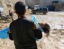 """Vụ khí độc: Syria là """"lá bài"""" trong cuộc chơi của các nước lớn?"""