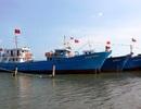 """Quảng Trị: Phát sinh nợ vay quá hạn với các """"tàu 67"""""""