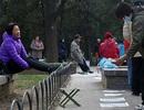 Phụ huynh Trung Quốc ra công viên tìm bạn đời cho con