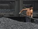 Trung Quốc vẫn nhập khẩu than Triều Tiên bất chấp lệnh trừng phạt