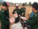 Quảng Trị: Chặn đứng 4 tạ gân gà bốc mùi nhập lậu từ Lào