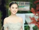 """Nữ sinh chuyên Lê Hồng Phong """"hóa"""" người mẫu chuyên nghiệp"""