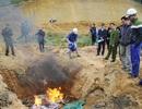 Bắt giữ và tiêu hủy hơn 1 tấn cá tầm nhập lậu từ Trung Quốc