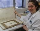 Tìm thấy bức tranh 118 năm tuổi ở Nam Cực