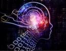 Jack Ma: Thế giới sẽ chịu nhiều đau đớn vì Internet và trí tuệ nhân tạo