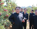 """Bị Mỹ, Trung trừng phạt, Triều Tiên quay sang """"làm ăn"""" với ai?"""