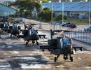 Gần 100 trực thăng quân sự Mỹ đổ bộ vào Đức