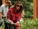 Đệ nhất phu nhân Mỹ xắn tay trồng rau tại Nhà Trắng