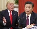 Bộ Ngoại giao thông tin Tổng Bí thư Trung Quốc, Tổng thống Mỹ tới Việt Nam