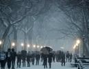 Mỹ phải hoãn hoặc hủy hàng chục nghìn chuyến bay vì bão tuyết