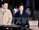 Công tố viên đề nghị bắt cựu Tổng thống Hàn Quốc Park Geun-hye