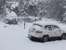 Tuyết rơi bất thường dày tới 40cm trong mùa Hè ở Australia