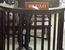 """Hà Nội: Hàng loạt cựu cán bộ xã Đồng Tâm hầu toà vì """"vô tư"""" bán đất"""